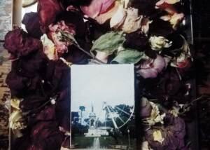 Irene Bee Kain - Farris Rose