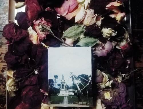 Farris Rose