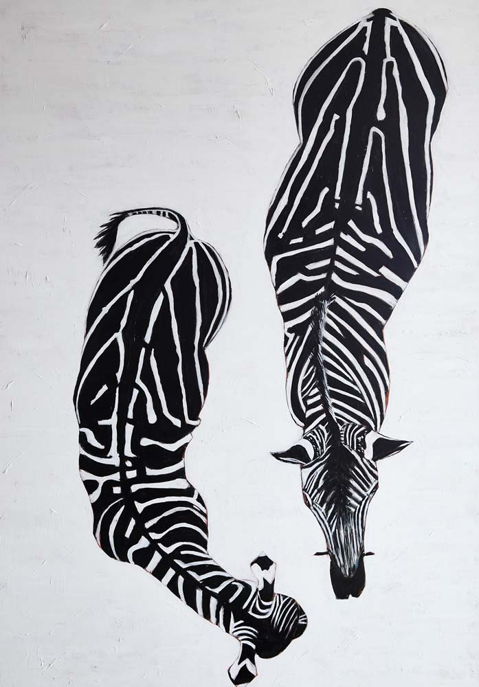 Donald Hershman - Female Zebra with Young Calf