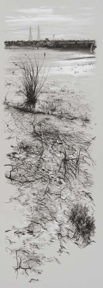 Sarah Newton - Mud slough, Fremont