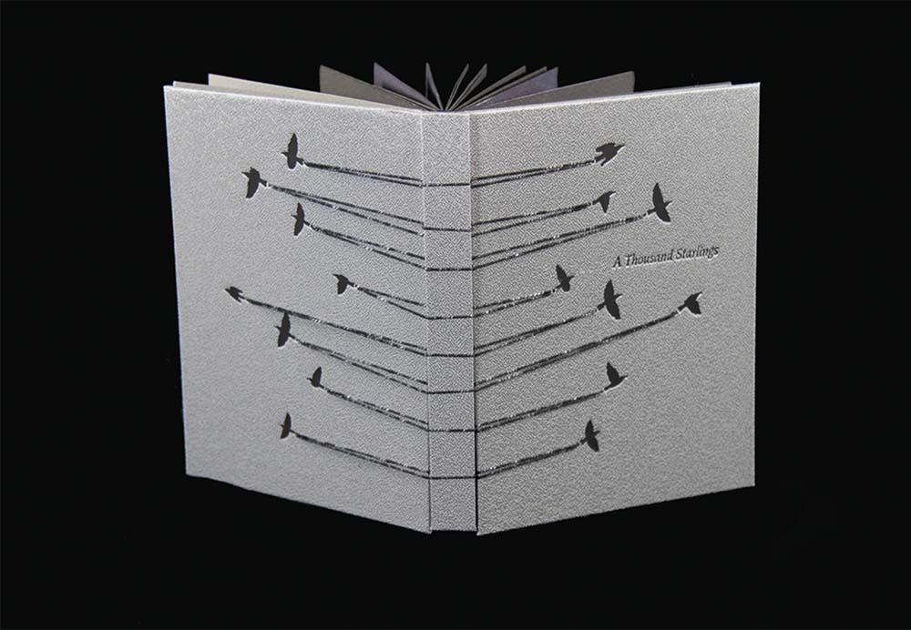 Rhiannon Alpers - A Thousand Starlings
