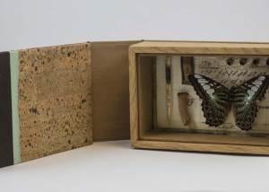 Rhiannon Alpers - Specimen Series